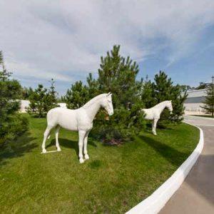 Конно-спортивный клуб Horses of Anastasia
