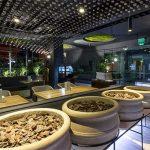 Кафе Terrace